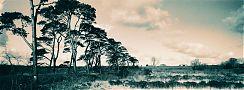 01.county-antrim-ireland